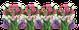 Almost Spring — Yandex.Disk
