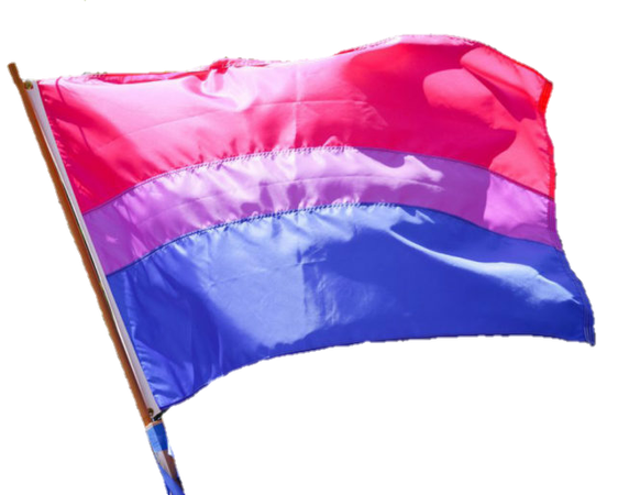 f77ced181 I'm surprised there's no bisexual flag png on we heart it. So here