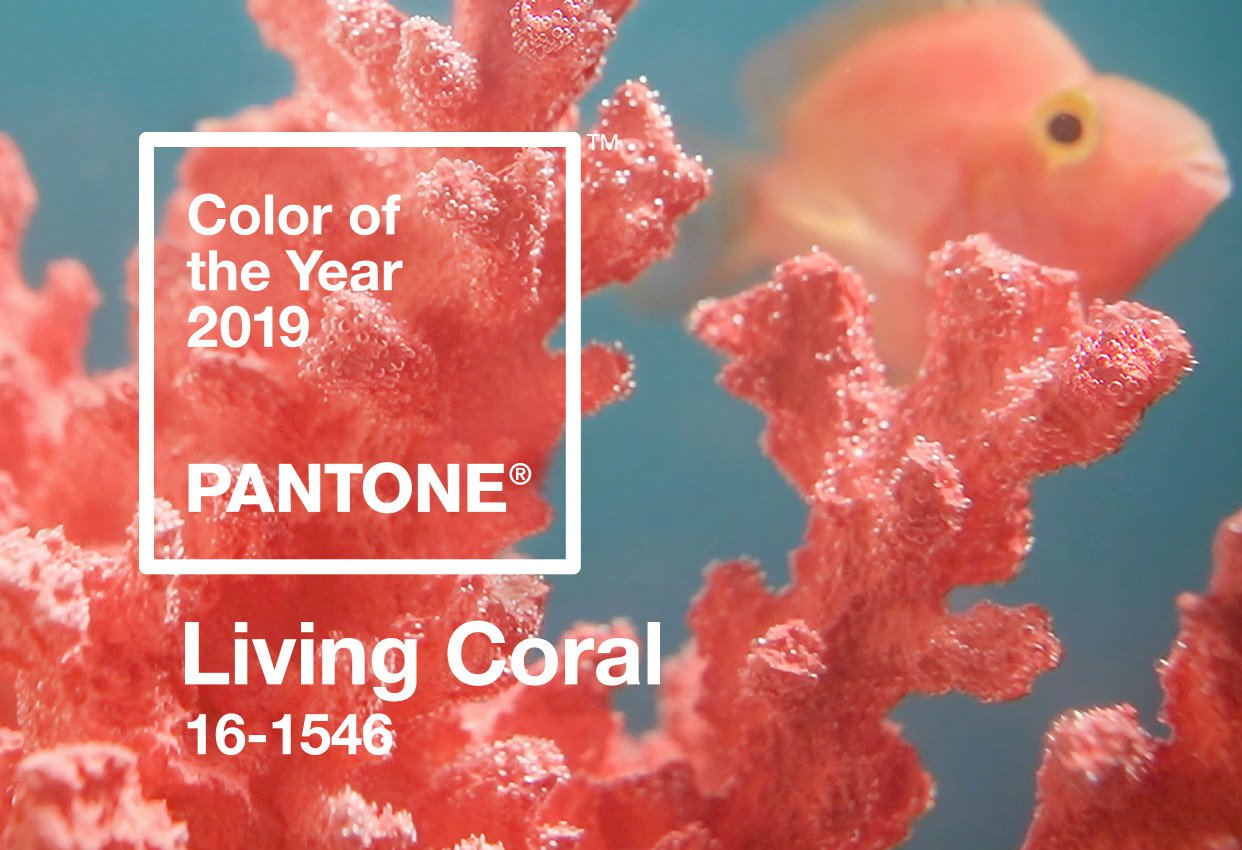 Pantone Colour of the Year 2019 Coral