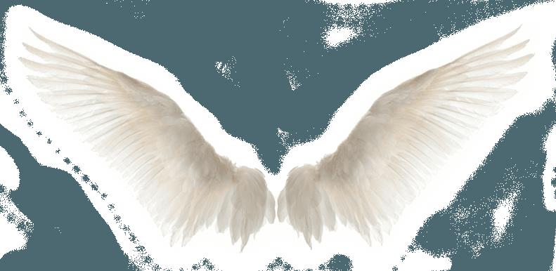 Angelic wings