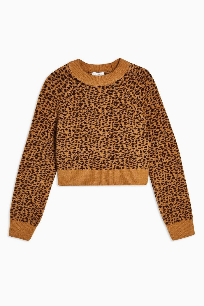 Micro Animal Cropped Jumper | Topshop