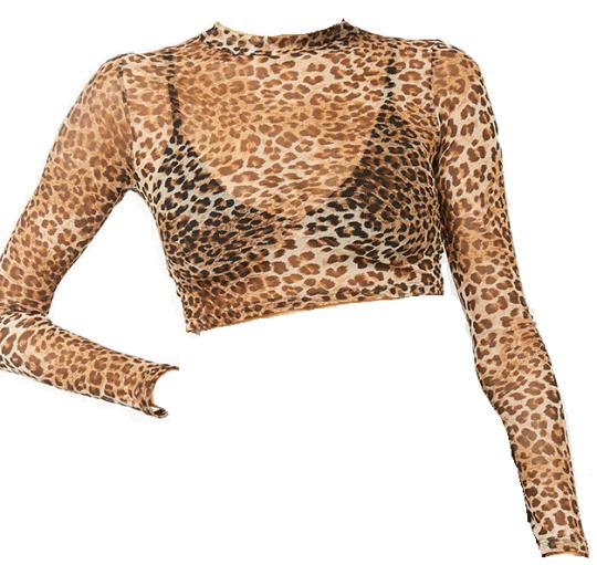 Sheer Mesh Leopard Crop Top