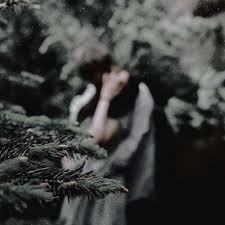 bella swan aesthetic forest - Google Search