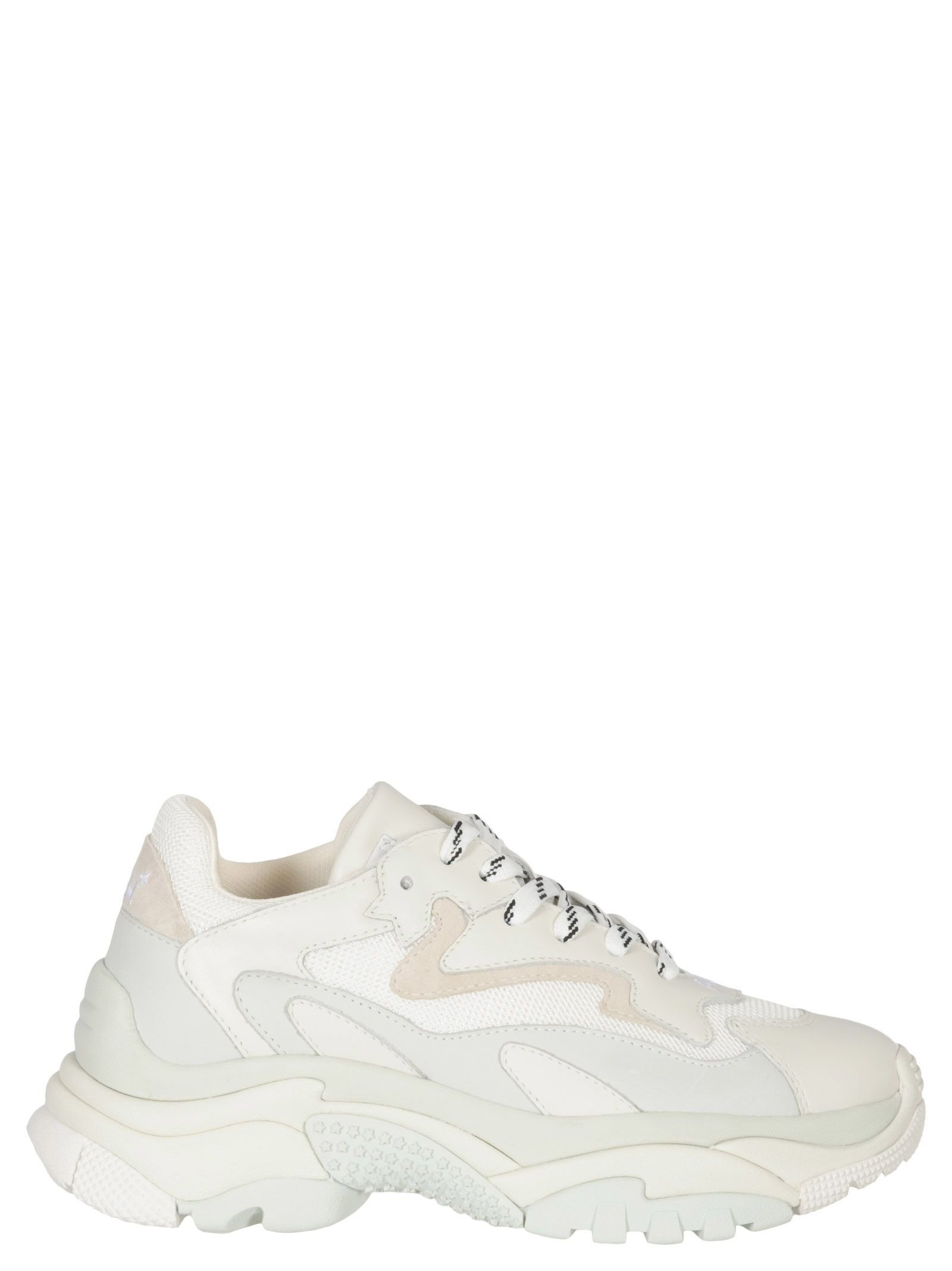 Ash Addict Sneakers