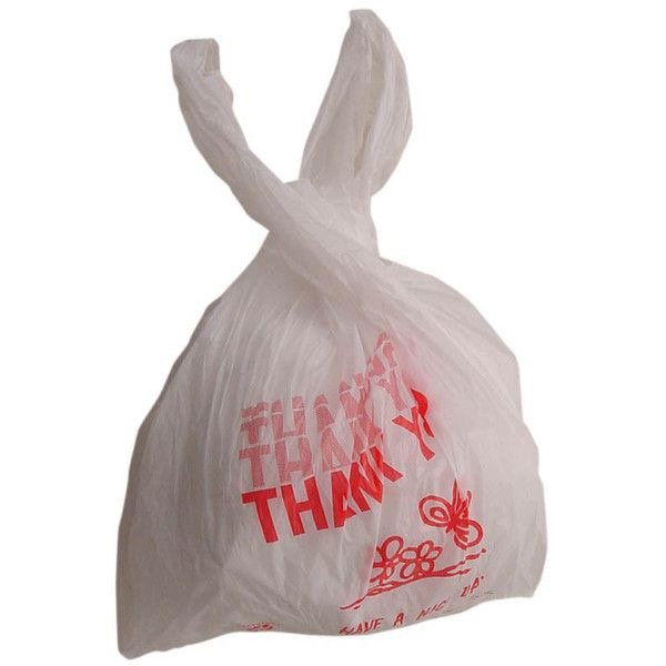 Plastic bag because I can