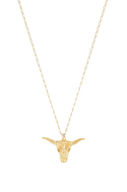 Big Horn Necklace