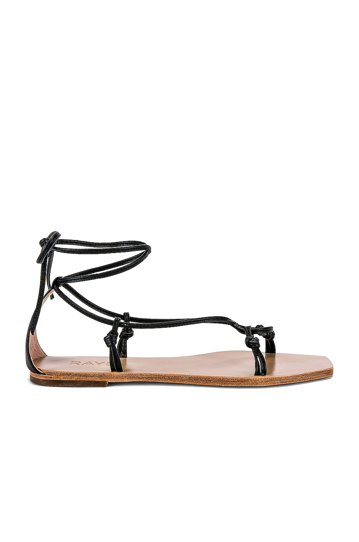 Omni Sandal