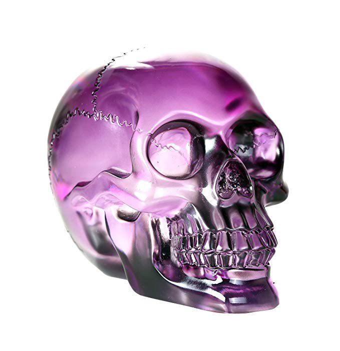 Amazon.com: Pacific Giftware Crystal Clear Translucent Skull Collectible Figurine 4.5 Inch (Purple): Gateway
