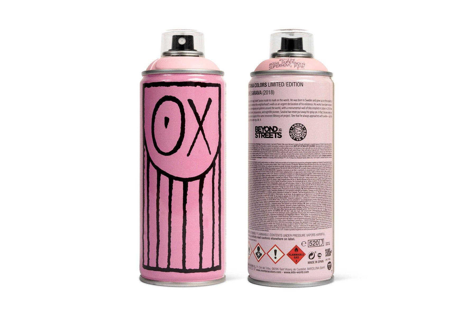 basquiat spray paint ?
