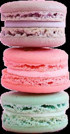 Pastel Macaroon