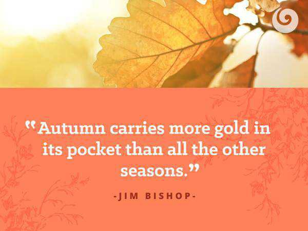 fall quotes - Google Search