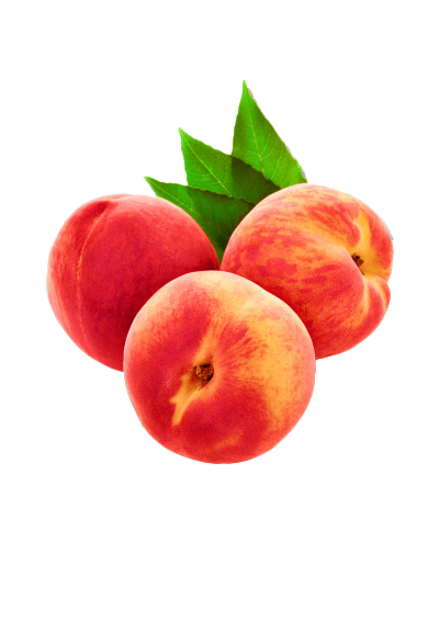 Peaches by png-transparent
