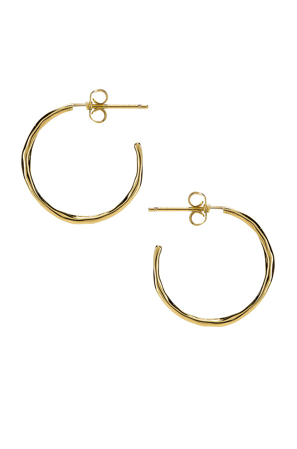 Taner Small Hoop Earrings
