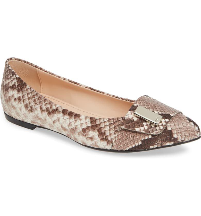 AGL Pointy Toe Flat (Women) | Nordstrom