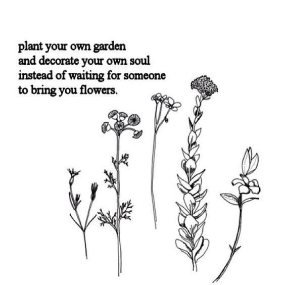 """Bohemian Quotes on Twitter: """"Plant your own garden 🌸 #bohemianquotes #quote… """""""