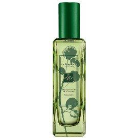 green perfume shamrock - Google Search