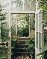 garden earth aesthetic photo - Google Search