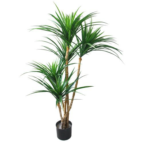 Artificial Tropical Yucana Tree with Rubber Leaves and Natural Trunk, Fake Plant for Indoor-Outdoor Home Décor-51-Inch Tall Topiary by Pure Garden | For Your Corner
