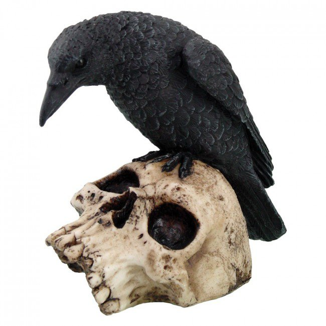 horror crow - Google Search