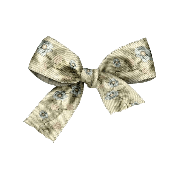 Green Bow (ribbon) png for moodboards
