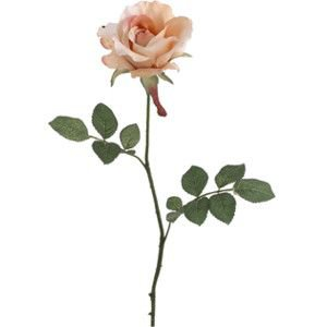 """27"""" Champagne Open Silk Rose 
