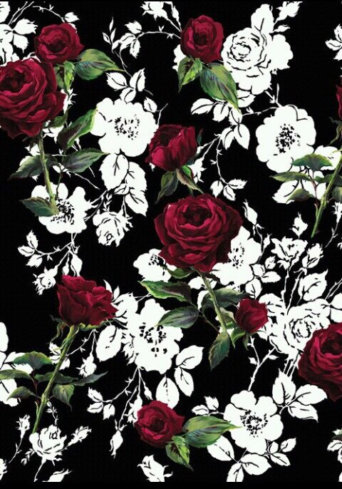 Red Roses on Black and White Print Background