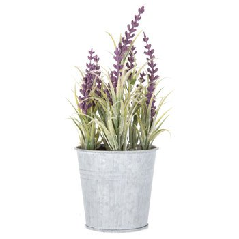 Mini Lavender Plant in Tin Bucket | Hobby Lobby | 1220763