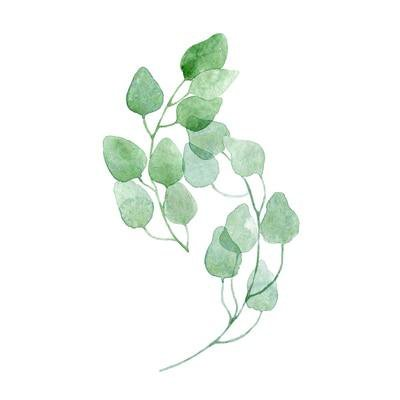 Nordic Green Leaves Natural Simple Modern Wall Art Plant Canvas Prints