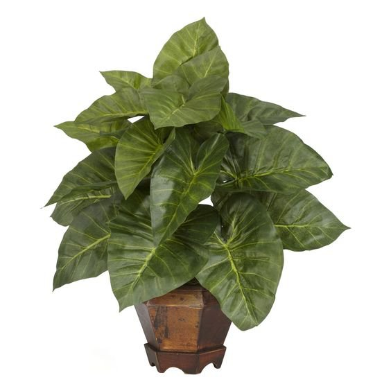 Nearly Natural Taro with Vase Silk Plant, Green (Wood)