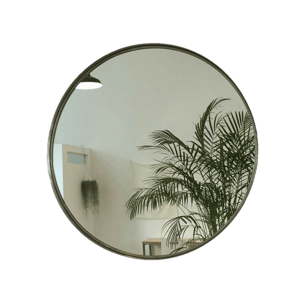 mirror with plant