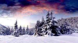 winter scenery - Google Search