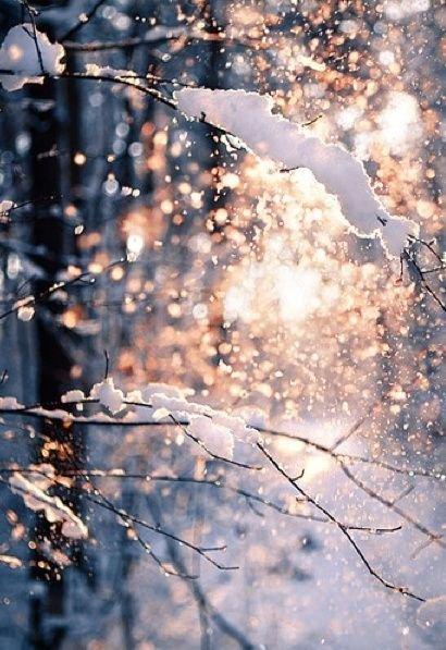 Winter Aesthetic