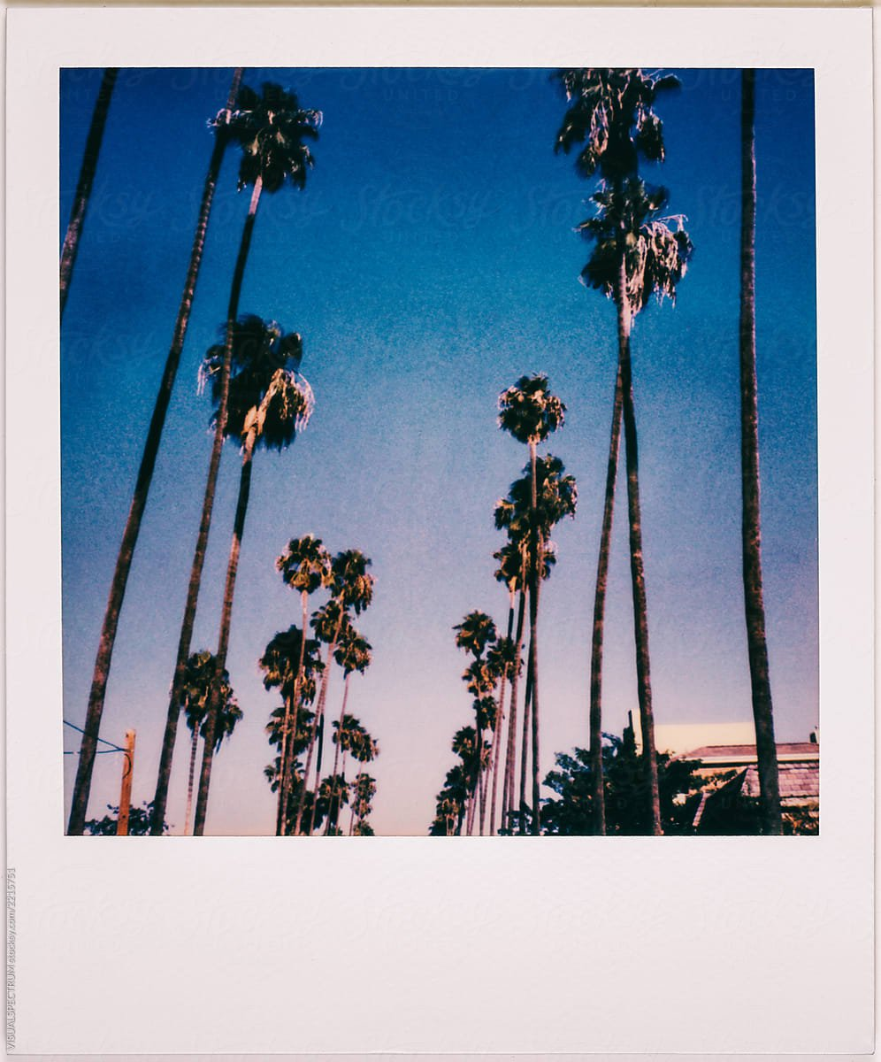 vintage polaroid pictures - Google Search