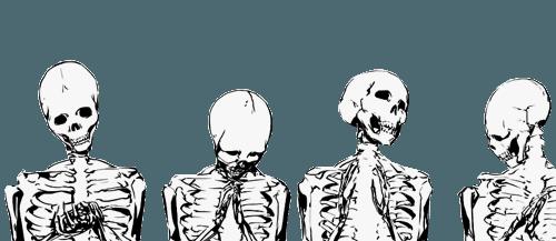 bones border