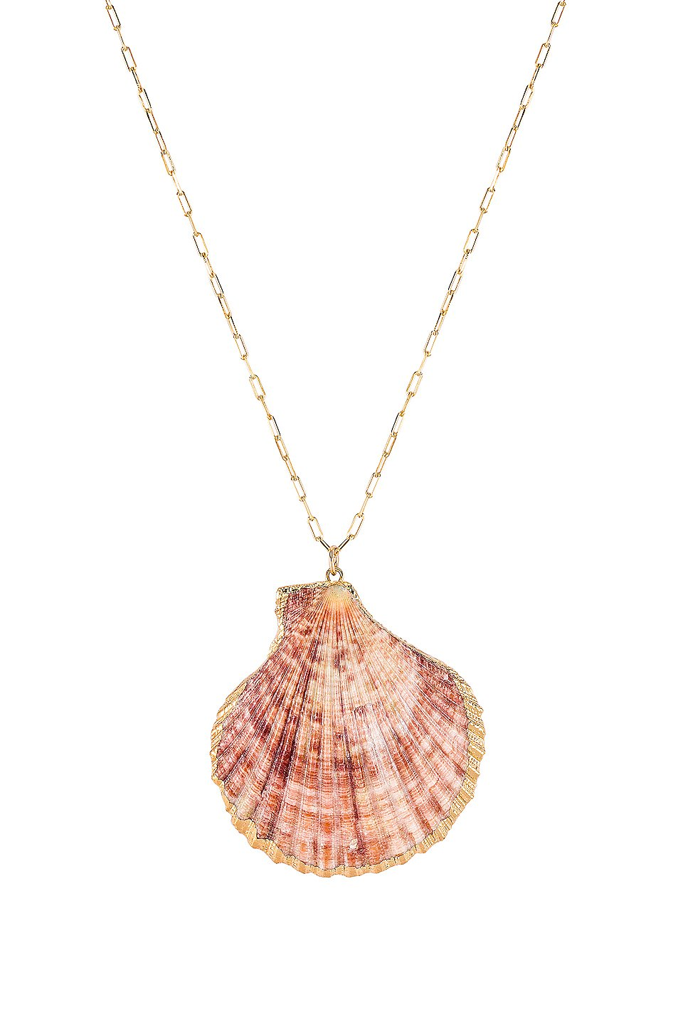 Offshore Shell Necklace