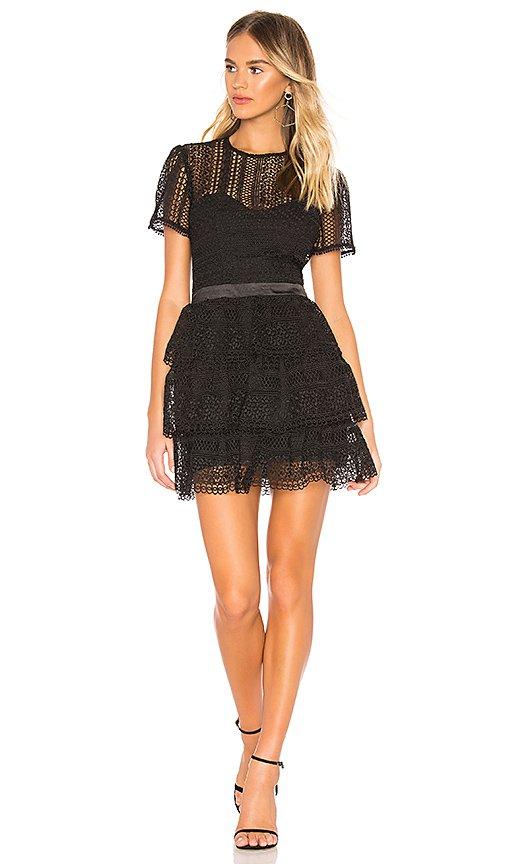 Bardot Ava Lace Dress in Black | REVOLVE