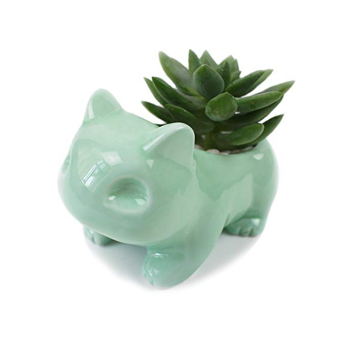 Kawaii Ceramic Flowerpot Cute Succulent Planter Cute Green Plants Flower Pot with Hole: Amazon.ca: Patio, Lawn & Garden
