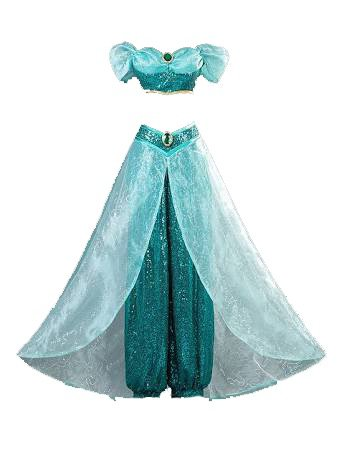 Disney Aladdin Princess Jasmine Animated Version Costume