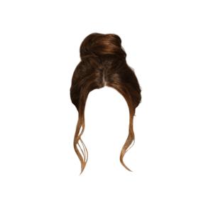 Brown Bun Hair PNG