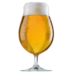 glass of beer png - Google Search