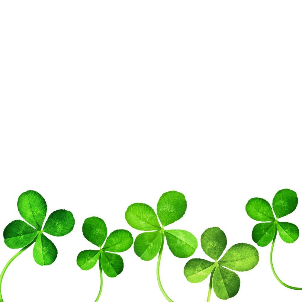 clover-clipart-clover-plant-895278-5981378.jpg (1000×1000)