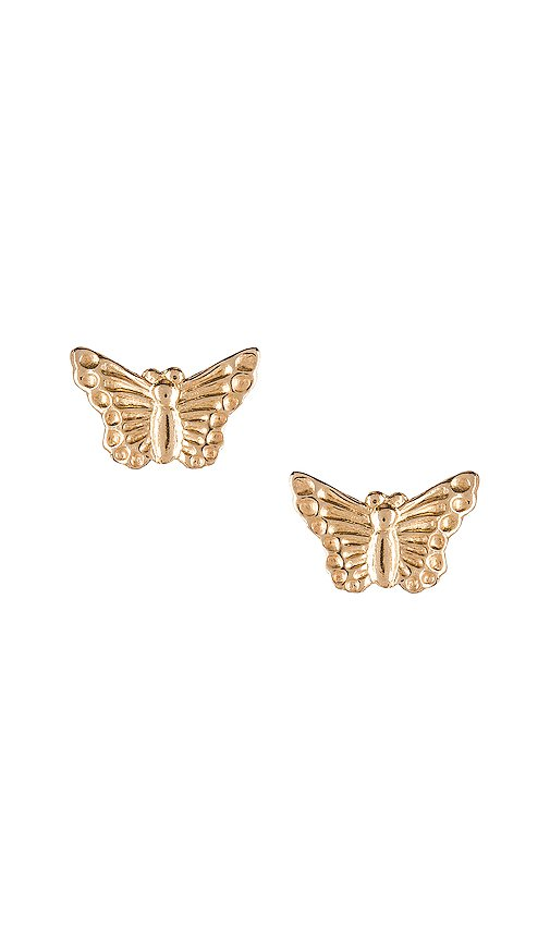 Natalie B Jewelry Butterfly Studs in Gold   REVOLVE