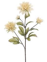 beige flowers - Google Search