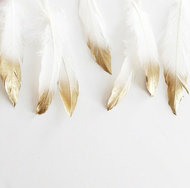 White and Gold Feathers